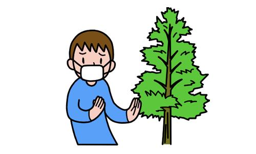 【No.102】花粉症のお話・サプリメントについて
