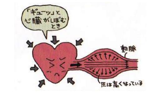 【No.205】血圧について