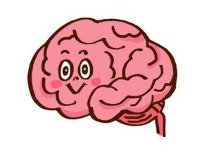 【No.282】脳の活性化と脳トレについて