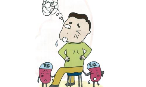 【No.270】あなたの腎臓の働きは大丈夫?